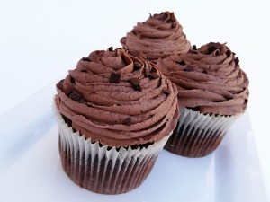 Frosted Chocolate Cupcake 2-pack